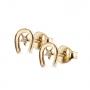 Golden horseshoes Stud Earrings